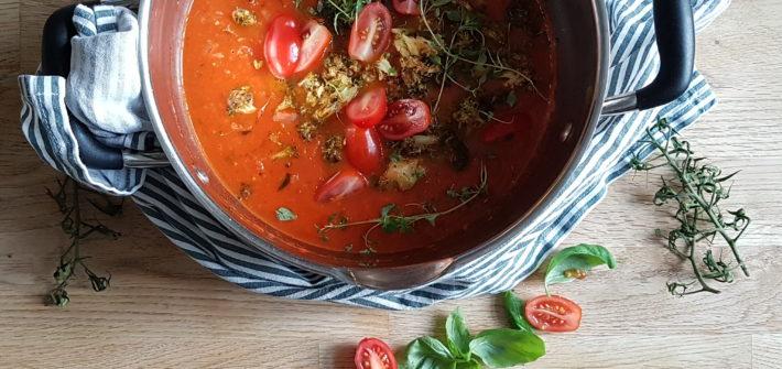 tomatsoppa med färska tomater